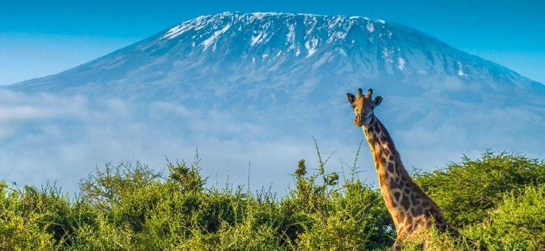 İstanbul Kilimanjaro Uçak Bileti